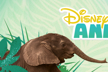 Disney Animals Blog Header